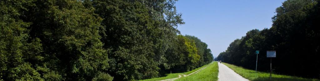 Últimos kilómetros do Danauradweg en Austria