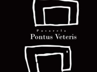Cinco pinceladas sobre Pontus Veteris