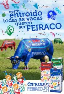mupi_entroido_feiraco_entera