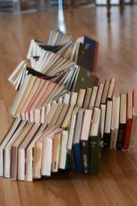 libros interior