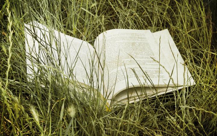 Pícnics literarios: a tendencia que queremos instaurar