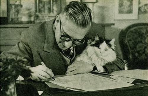 Sartre e gato