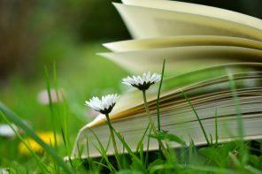 Unhas cantas actividades literarias para a semana do día das Letras Galegas